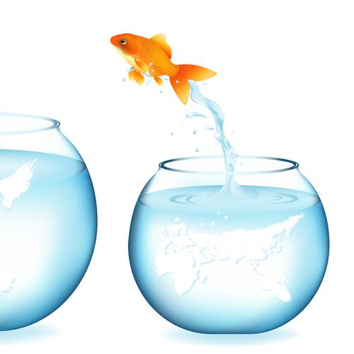 karty metafor - skacząca ryba